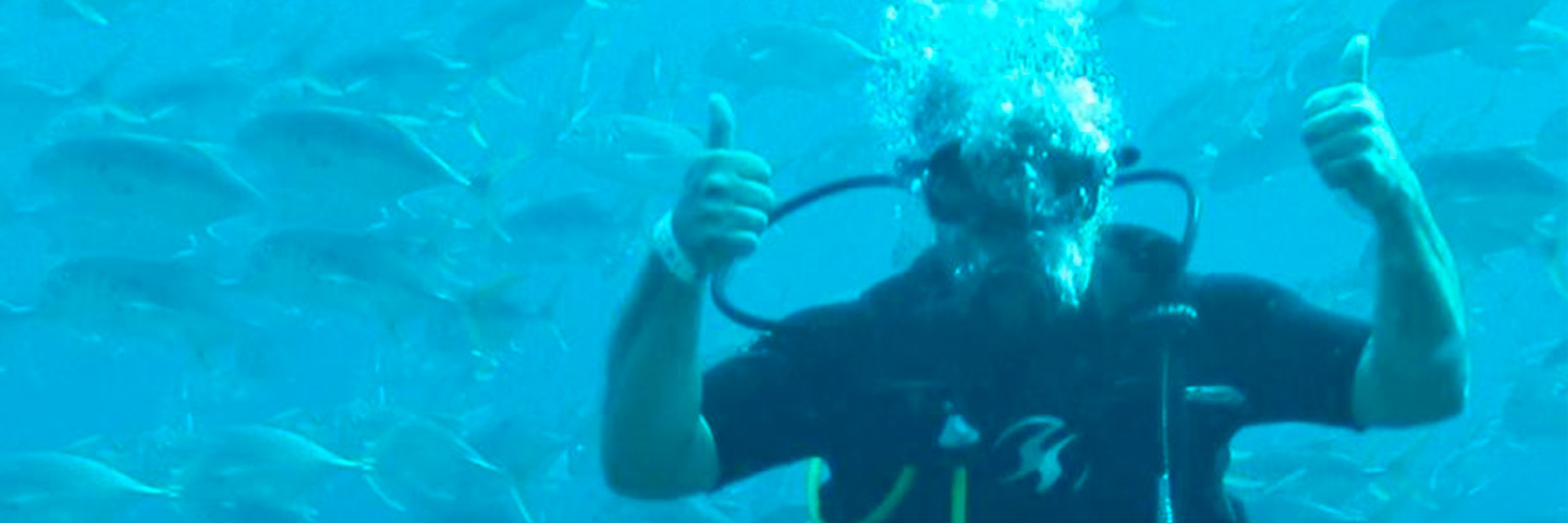Open Water Diver Certification Scuba Dives