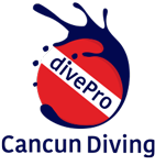 divePro Cancun Diving